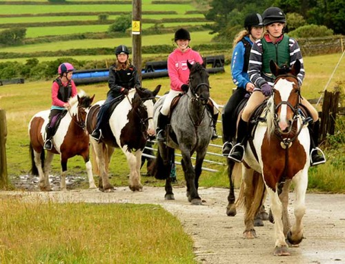 Galgorm Parks Riding School